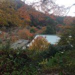 談山神社まで走って行って、参拝して、走って帰る。